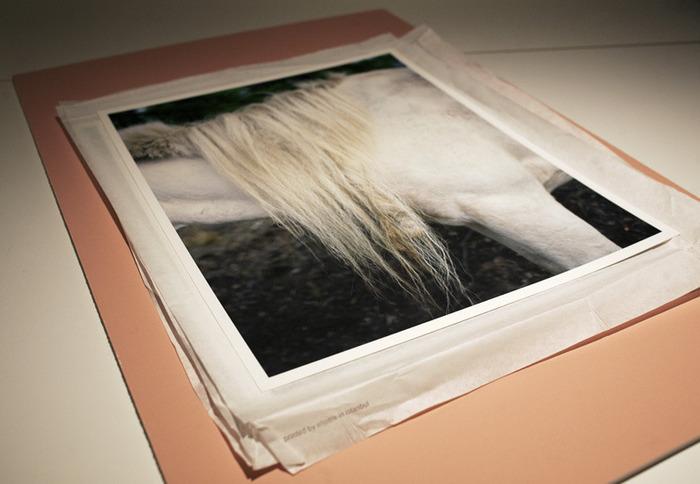 "11x14"" archival inkjet prints for the clamshell portfolio."