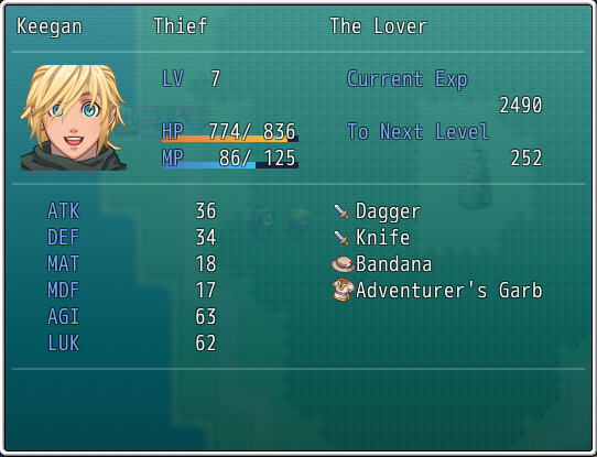 The player's status screen