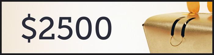 $2,500 Stretch Goal