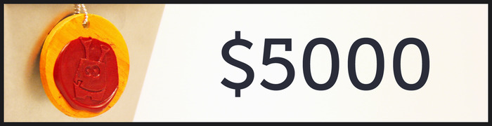 $5,000 Stretch Goal