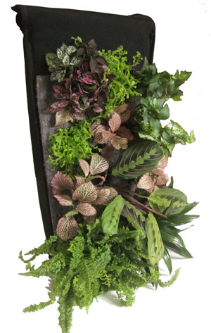 A planted living wall planter