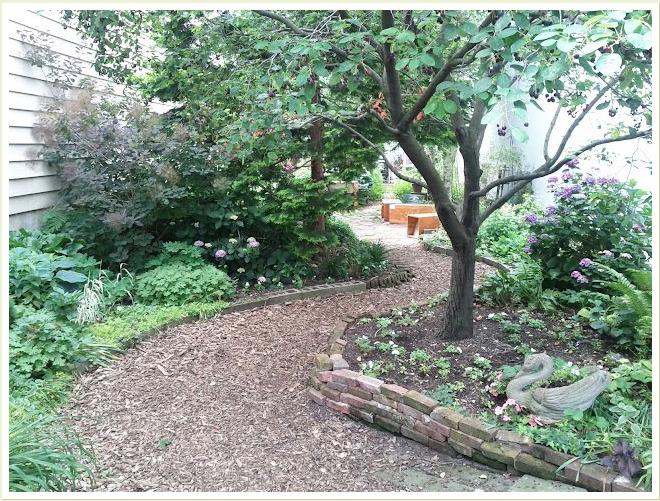 LIC Community Garden, future home of LIC Duck