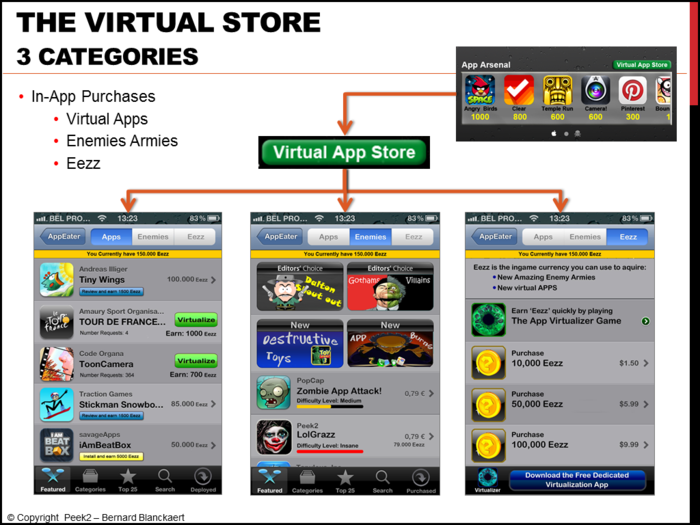 Overview of the Virtual Store.