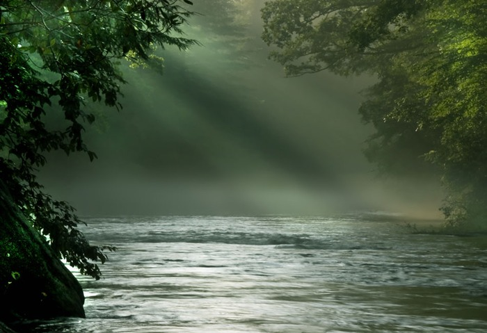 Chattooga Morning - The West Fork of the Chattooga River