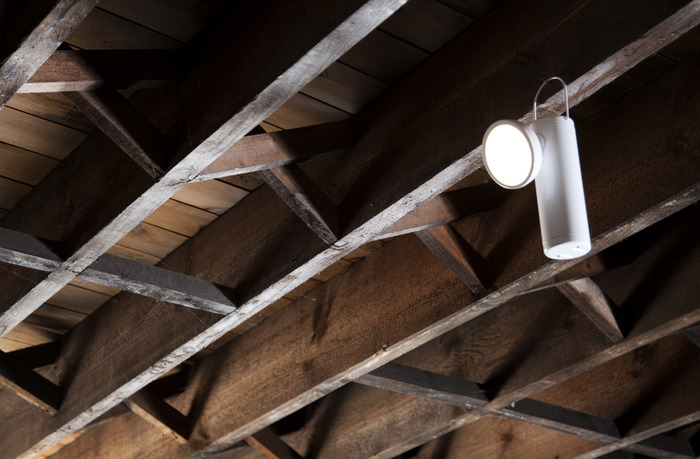 Hanging from the rafters