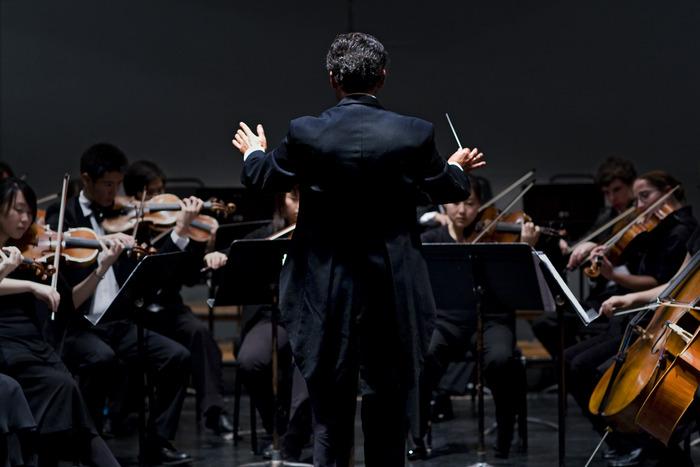The Palo Alto Chamber Orchestra