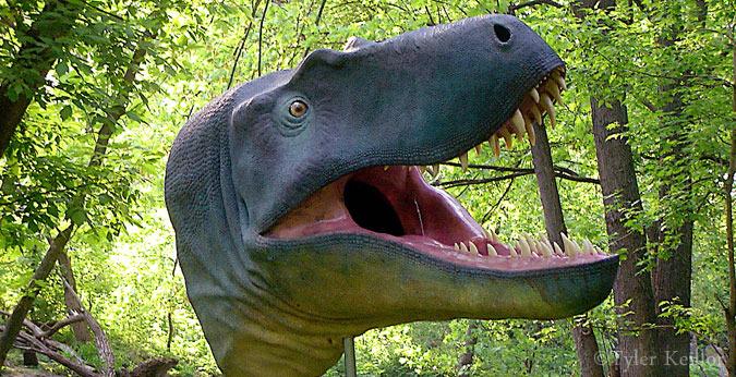 """""""Jane"""" juvenile tyrannosaur"""