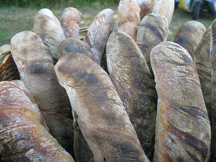 A classic french loaf shape, the Tordu (french for twisted) is a delicious snack with some pungent cheese or all by itself.