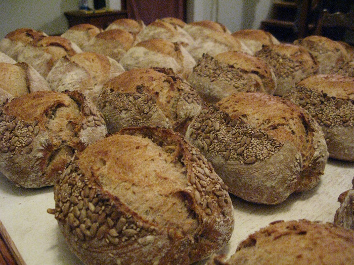 Our multigrain loaves made with a hearty mix of soaked grains. A very popular bread!