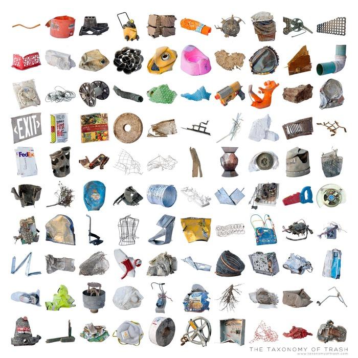 Taxonomy of Trash, Tim Eads