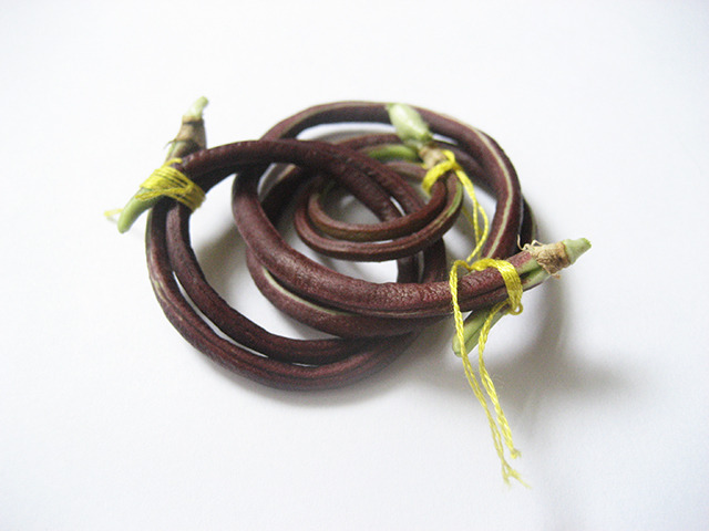 #62 - 10 of 10 remaining - Chinese Red Noodle Bean No. 1