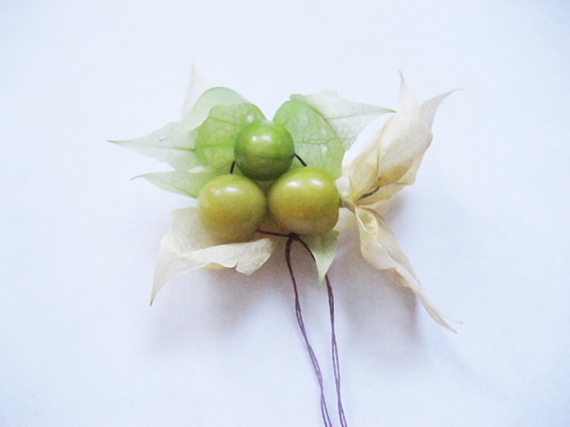 #67 - 10 of 10 remaining - Aunt Molly's Ground Cherries No.1