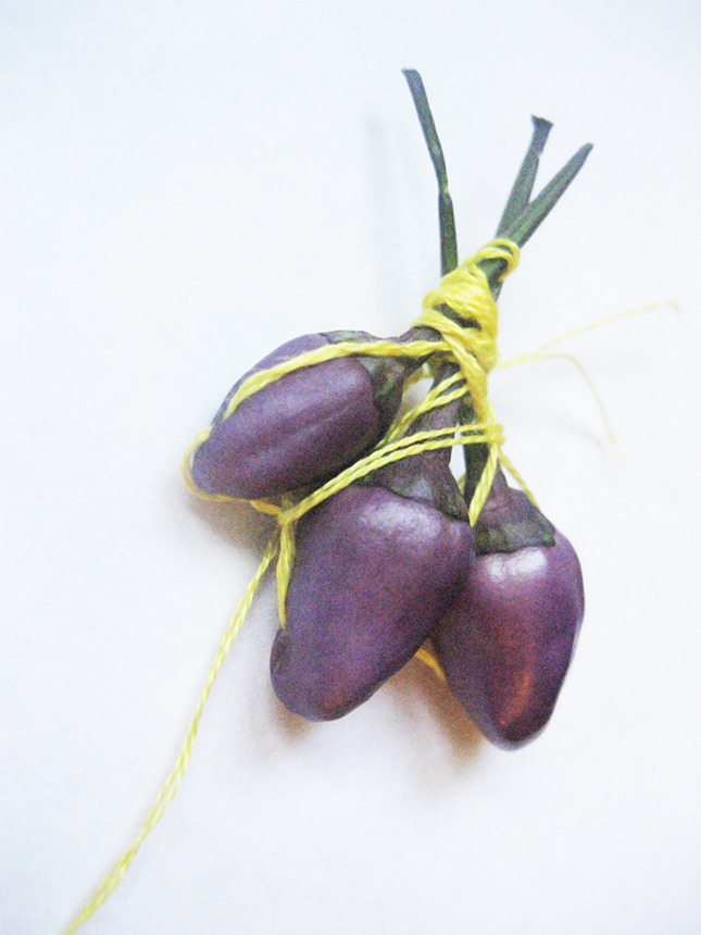 #68 - 10 of 10 left - Chinese Five Color Peppers No. 1