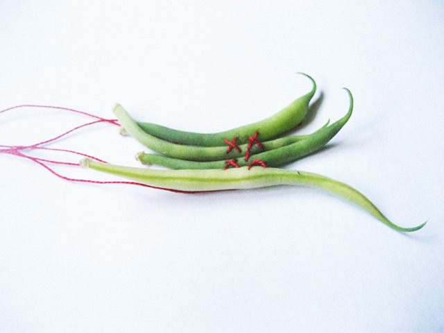 #78 - 10 of 10 left - French Climbing Bean No. 1