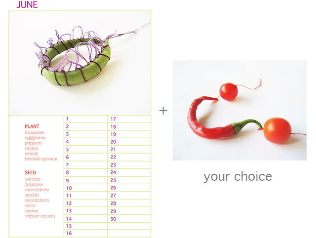 """Planting Calendar plus 9"""" x 12 Limited Edition Print of your Choice"""