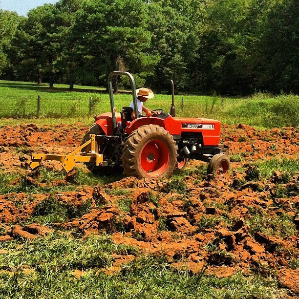 Breaking ground! The farm is so beautiful... :)