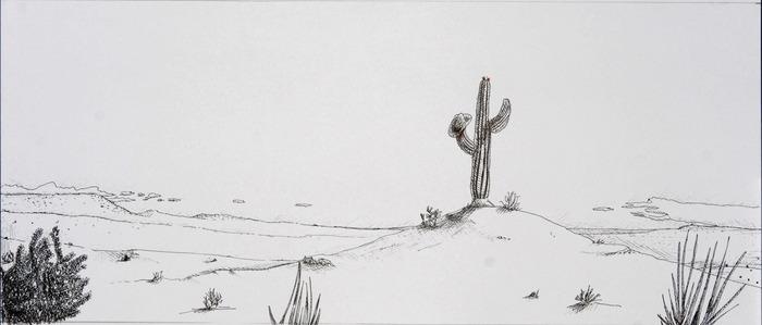 Film background: the desert, duh