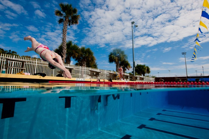 "Limited Edition Stephen Frink Photo - ""Dive"""