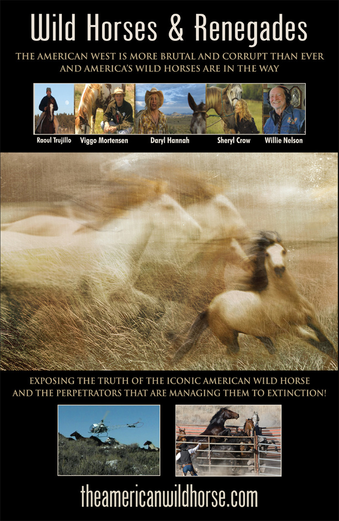 Our International Award Winning Documentary Film Wild Horses & Renegades