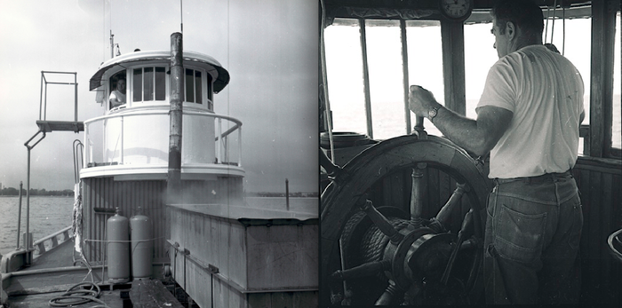 """These two photographs were taken aboard Laurel during 1968 while she was """"mopping"""" for starfish. Captain Fred Beloin is at the helm in both photographs."""