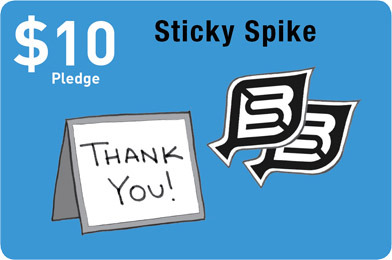 Sticky Spikes: Two BikeSpike stickers, one for you and one for a pal. Plus, a signed thank you note from the founder.