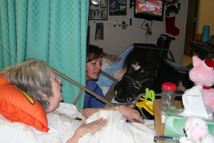 Lori and Lacey (RIP), our minihorse, bring joy to residents at a local nursing home.