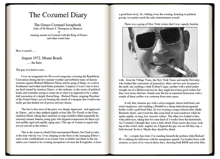 sample page from The Cozumel Diary