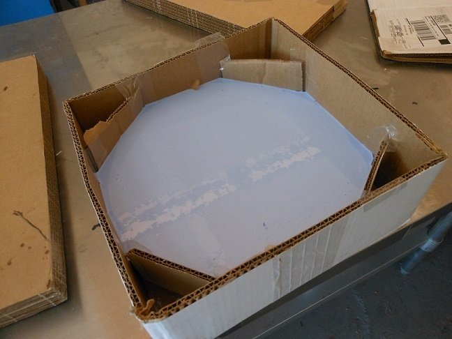 Silicone mold of the Disc