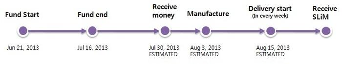 process of SLiM (estimated)