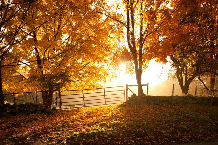 Valley View Farm, Topsfield                                       http://www.kindraclineff.com/