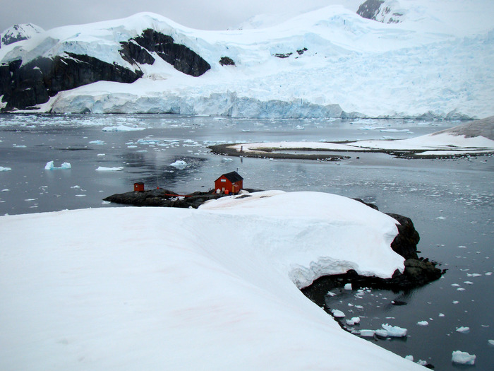 This is the front side of the icy slope where I played my violin for the penguins! And broke my elbow! And fell in love!