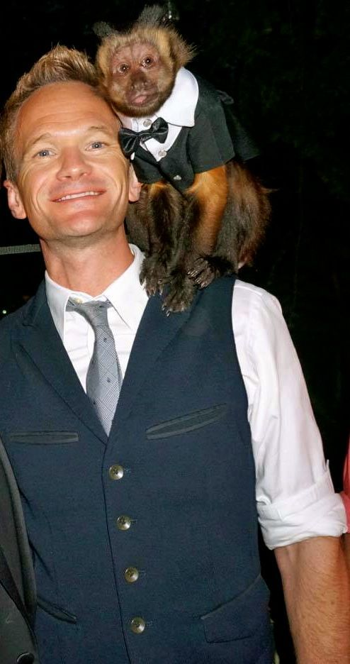 Neil Patrick Harris and Wilson at Brookledge - Photo by Tommi Cahill