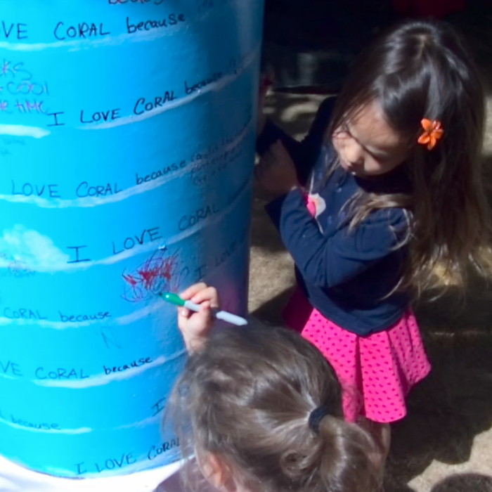 """""""I Love Coral because______"""" inspired by Candy Chang's """"Before I Die________"""" project."""