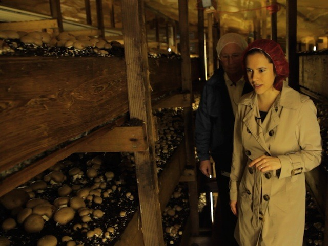 No, that's not Nicole in a WWII spy thriller. That's a still from Episode One: Mushrooms.