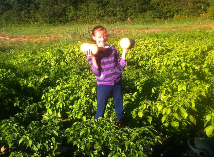 Walking in the pepper patch with a pair of butternut squash.