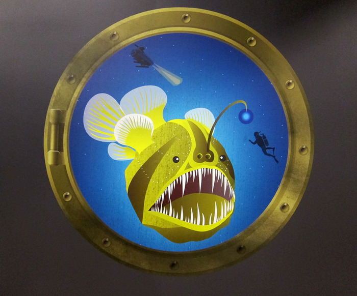 Anglerfish Interactive Illustration for Australian Museum Deep Oceans Exhibition