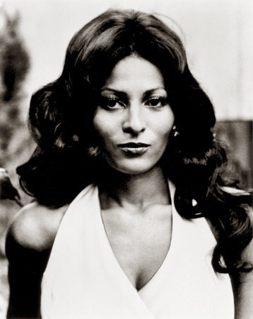 "Pam Grier (Foxy Brown, Coffy, Jackie Brown, Original Gangstas) as ""Kelly"""