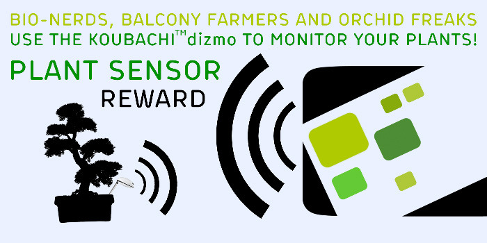 Give your plants a voice with a Koubachi plant-sensor dizmo !