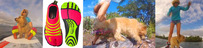 VIDEO: Dogs are our best friends. Experience the fun and freedom of ZEMs together!