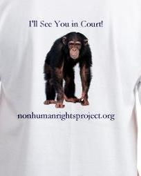 The official Nonhuman Rights Project t-shirt (available in xs, s, m, l, and xl)