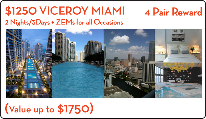 2 PEOPLE + 4 Pairs of ZEMs + anything Miami can offer. 2 nights 3 days of MIAMI Luxury: Includes: $ 100 SPA Certificate