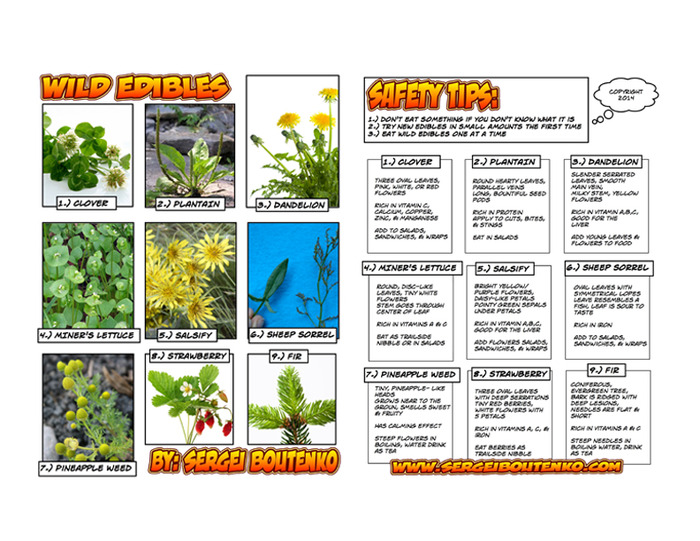 Print this ebook, laminate it, and take it with you on your next outdoor outing!