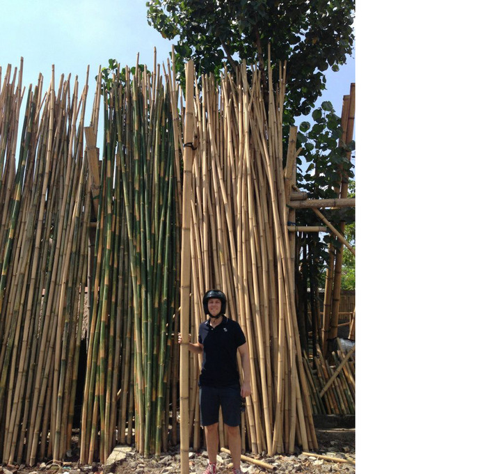 Daniel and his love for bamboo