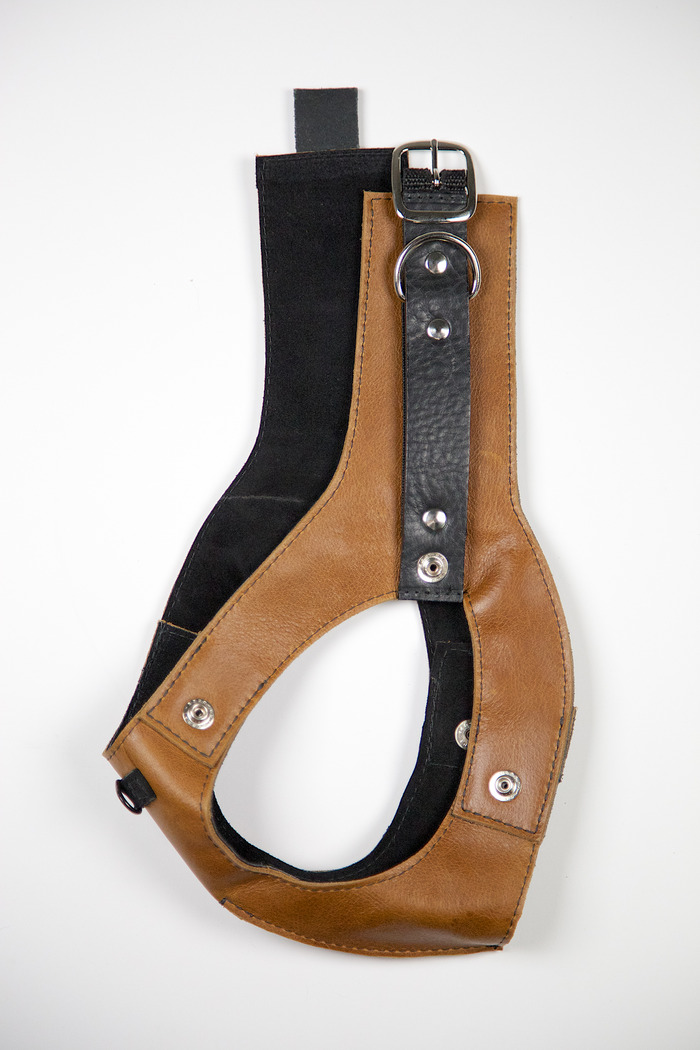 Deetach harness. All leather construction, inside is lined with suede.