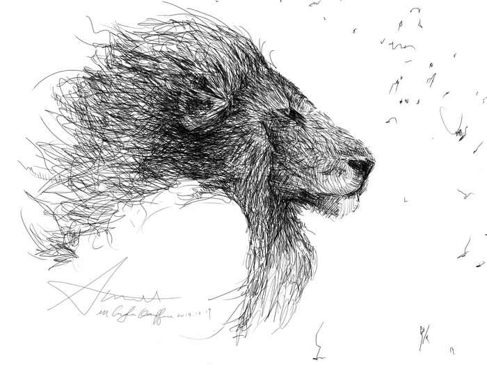 Lion Sketch Drawn with iPen 2