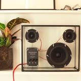 Transparent speaker front with plant cropped for kickstarter.medium