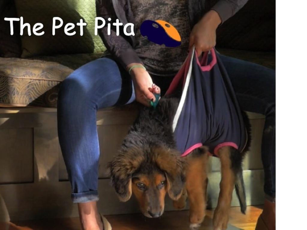 The Pet Pita's video poster