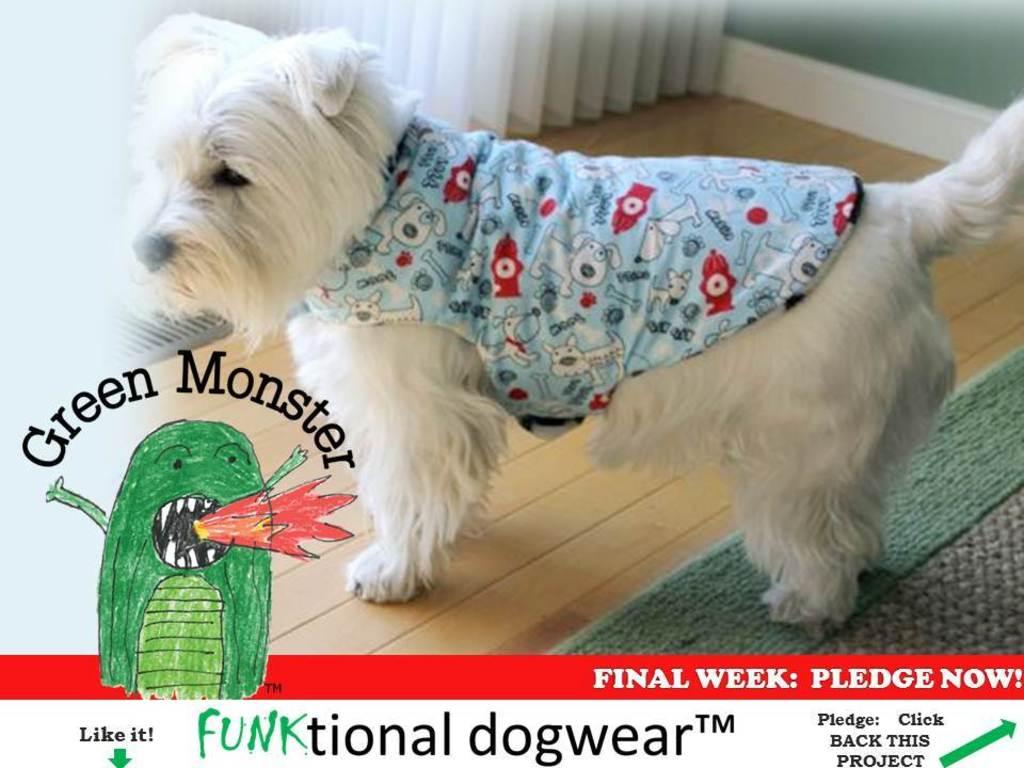Green Monster Debuts Funktional Dogwear in Vegas!'s video poster