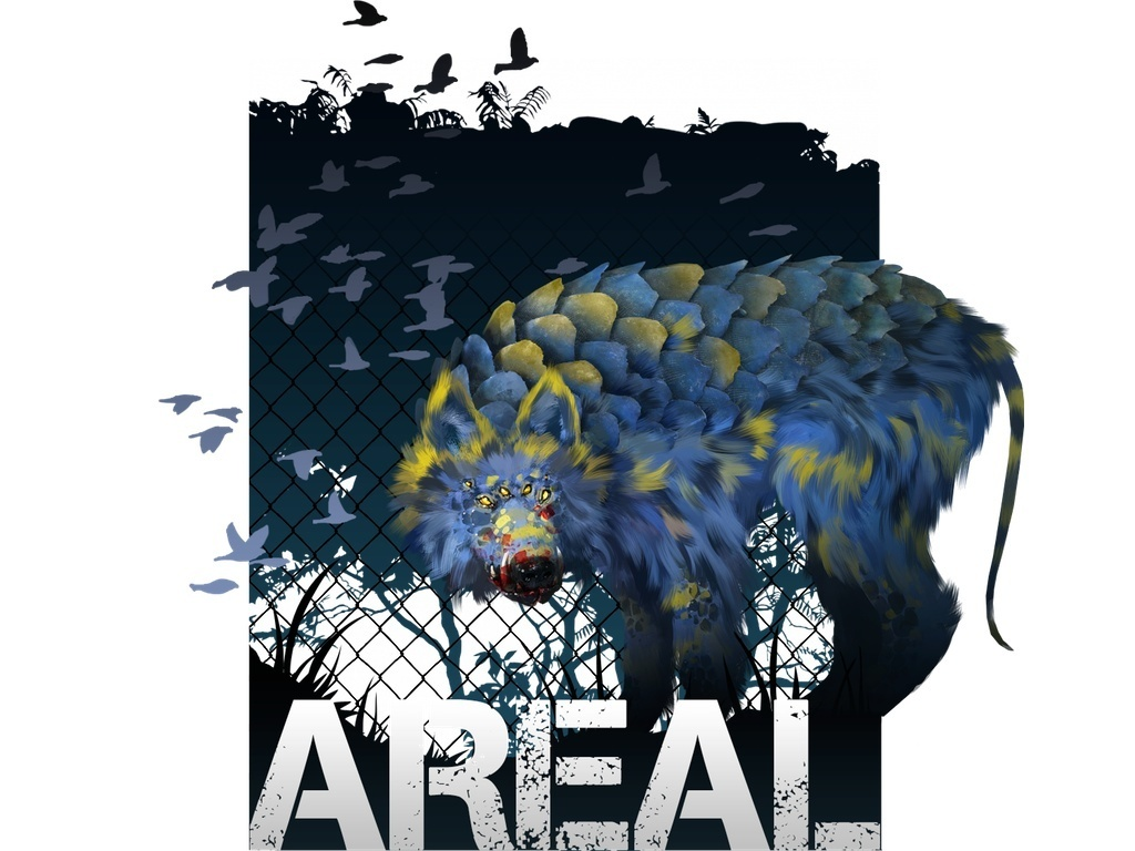 Areal (Suspended)'s video poster