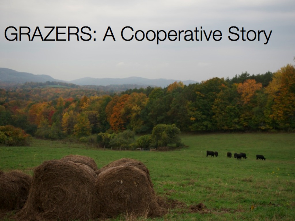 Grazers: A Grass-Fed Beef Cooperative Story- Documentary's video poster
